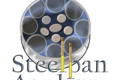 Steel Pan Academy Workshop